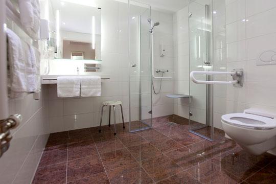 hotel birkenhof bad soden salm nster k nig b der. Black Bedroom Furniture Sets. Home Design Ideas